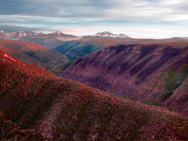 norwood canyon colorado
