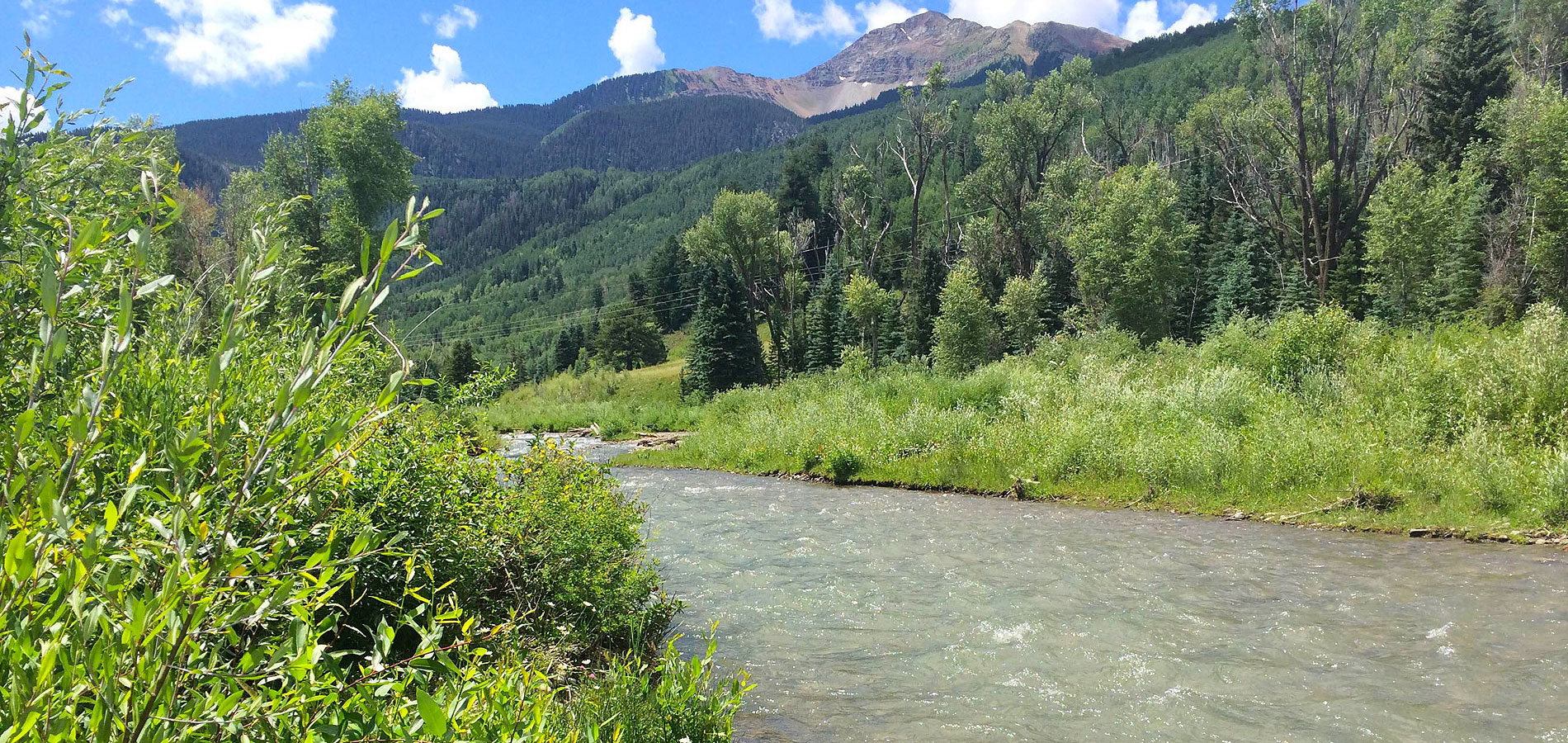 San Miguel Watershed Coalition Projects